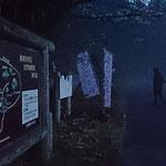 登山道入り口♪ まるでゲゲゲの鬼太郎の世界… カラスもいっぱい(*_*)