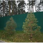 Забор из профнастила для дачи в Волоколамске