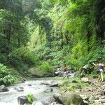 Enjoy a short trekking to reach the hidden Sekumpul Waterfalls