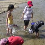 川の生き物調査