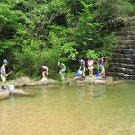 桐生川の生き物調査