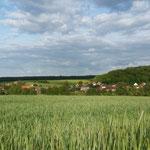 Blick nach Schwanefeld hinüber