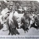 """... und bei der Übergabe Sachsen-Anhalt an Brandeburg hat sie mich brav als """"Beisitzer"""" getragen. (Foto: aus der MAZ kopiert)"""