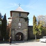 Manasteri Moldovita