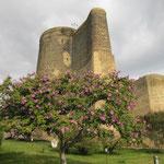 Maiden's Turm