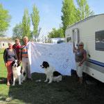 Holländer mit Hunde