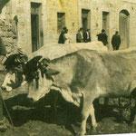 Pablo Corros delante de la casa de Anton de Getra