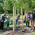 7. Mai: Mit einer Pflanzaktion wird im Biesdorfer Park dem 75. Jahrestag der Befreiung vom Nationalsozialismus gedacht. Drei junge Birken sollen an den einstigen sowjetischen Soldatenfriedhof am Standort erinnern.