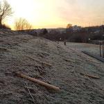 30. Januar: In der Nacht zum 30. Januar wird der Kienbergpark erneut zur Zielscheibe blinder Zerstörungswut. Diesmal trifft es den Weinberg. Unbekannte brechen alle Pflanzen einzeln ab und reißen Weinpfähle aus dem Boden. © Grün Berlin
