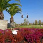"""Am 30. Juli wird den Gärten der Welt zum wiederholten Mal der """"Green Flag Award"""" verliehen."""