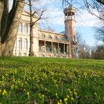 Seit 1. Februar muss der Bezirk Schloss Biesdorf wieder selbst bespielen. Weil die erwarteten Einnahmen ausblieben, war die Grün Berlin GmbH aus dem Betreibervertrag für die aufwendig sanierte Turmvilla nach nur anderthalb Jahren ausgestiegen.