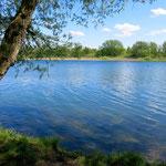 Seit Mai kümmern sich die Profis der Berliner Stadtreinigung (BSR) um die Müllbeseitigung in der Kaulsdorfer Seenlandschaft und rund um die Hönower Weiherkette.
