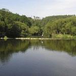 Foto Flusslandschaft bei Drosendorf