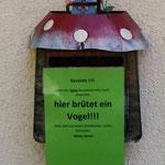 Im Sommer 2014 brüteten Vögel im Briefkasten der Praxis Dr. Adelmann.