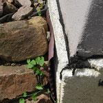 Grund: Fehler/mangelhaft ausgeführte Islierung der Kelleraussenwand