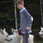 Henry, der Hundeflüsterer