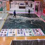 花巻市産業博覧会 フロアラッピング
