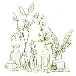 アンティークの瓶と植物のイラストーインク