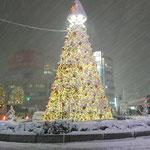 大雪の日のレッスン帰りにパシャリ