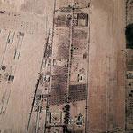 Satelietfoto van Ard el Amal