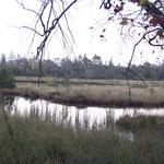 Wildsee in der Dämmerung