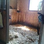 Fensterbox in der Stallgasse