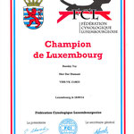 Champion du Luxembourg