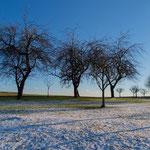 Januar: Ein Hauch von Winter