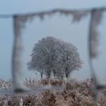 Januar: Neujahrsmorgen in der Oberpfalz