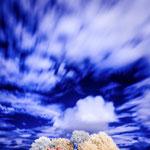 CloudlyCottage