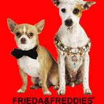 Dogs FRIEDA&FREDDIES