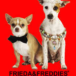 Dogs FRIEDA&FREDDIES