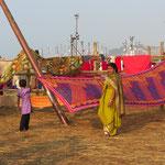 Inde, Pélerinage 2013 de la Kumbh Mela, les femmes s'immergent habillées dans le Gange, puis font sécher leurs sari avec le vent, ultra fin leur sari sèche très vite
