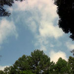 ペンションの庭から見える空