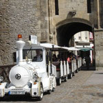 Petit train de La Ferté Bernard dans la Sarthe