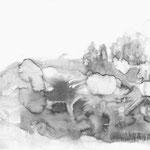 30х40 см, карандаш, тушь на бумаге, 2009, собственность автора