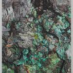 curiosity oil on canvas 53.0 × 45.5 cm