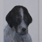 Setter  acrylic on canvas 40.9 × 31.8 cm