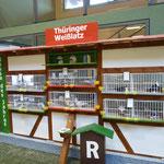 Schauwand Thüringer Weißlätze