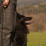 Schutz-Training mit knapp 15 Monaten