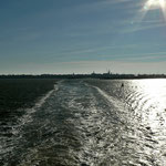 Auf dem Wattenmeer