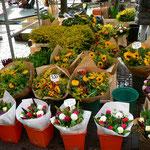 Markt in Leiden