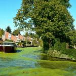 Rijn Schiekanaal