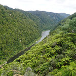 Wanganui Fluss (Wanganui River)