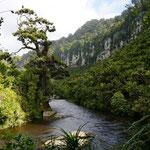 Fluß Porarari (Porarari River)