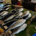 Banda Aceh fish market