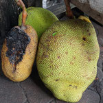 Local market pajak horas, jack fruit
