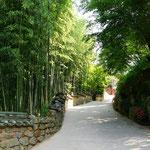 Cheongnyeonam Tempel - Cheongnyeonam temple