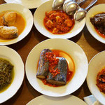 Padang Gerichte, verschiedene Gerichte in kleinen Portionen, Bali