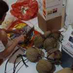 Durian, stinky fruit